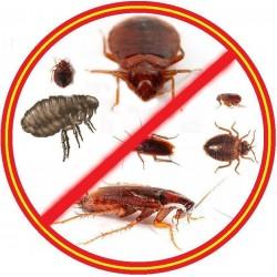 Уничтожение и обработка помещения от насекомых в Москве и области специализированной службой Экодез-мск