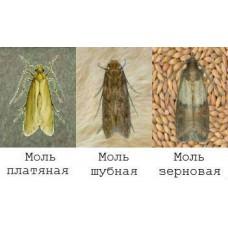 Профессиональное уничтожение и обработка от моли в Москве и области с гарантией